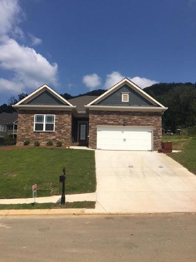 Ooltewah Single Family Home For Sale: 9015 Bear Claw Crossing #292
