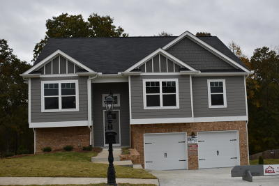 Hixson Single Family Home For Sale: 9354 Chirping Rd #152