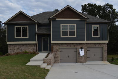 Hixson Single Family Home For Sale: 9362 Chirping Rd #153