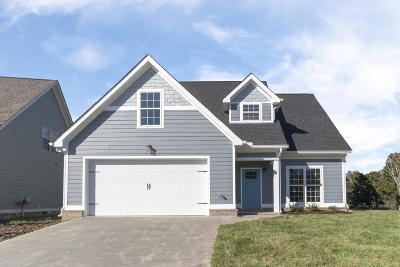 Ooltewah Single Family Home For Sale: 5575 Little Gem Ln