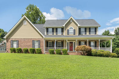 Soddy Daisy Single Family Home For Sale: 603 River Landing Dr