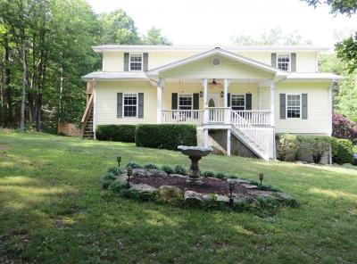 Rising Fawn Single Family Home For Sale: 227 Fox Trail Rd