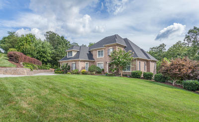 Ooltewah Single Family Home For Sale: 9804 Deer Ridge Dr