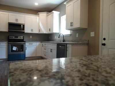 Ringgold Single Family Home For Sale: 359 Karen Dr