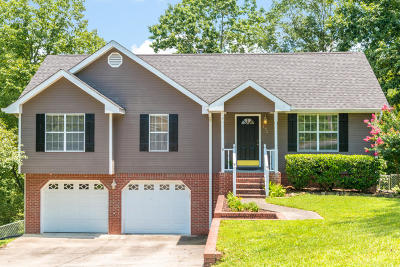 Ringgold Single Family Home Contingent: 172 Shady Brook Ln