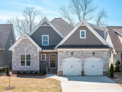Ooltewah Single Family Home For Sale: 8170 Savannah Bay Dr