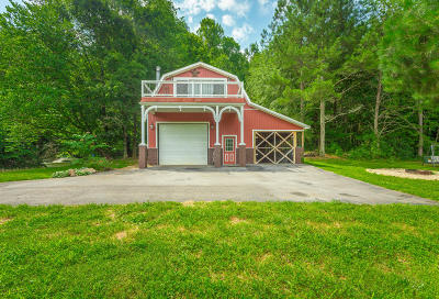 Ocoee Single Family Home For Sale: 1564 Sloans Gap Rd