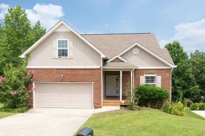 Ooltewah Single Family Home For Sale: 7825 Albertson Ln