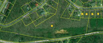 Dayton Residential Lots & Land For Sale: 10.76ac Blueberry Hill Rd