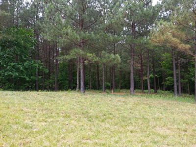 Marion Residential Lots & Land For Sale: 53a & 53 Thunder Ridge Drive