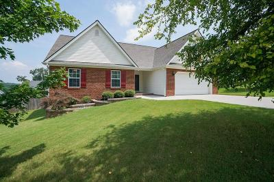 Ringgold Single Family Home For Sale: 117 Heatherwood Ln