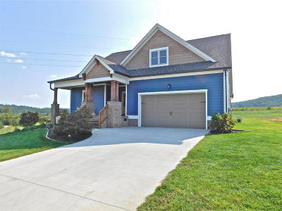 Apison Single Family Home For Sale: 3637 Stickley Way