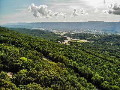 Trenton Residential Lots & Land For Sale: Ga 136 Hwy