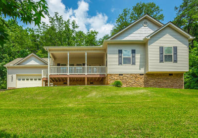 Ringgold Single Family Home For Sale: 442 Clearview Dr