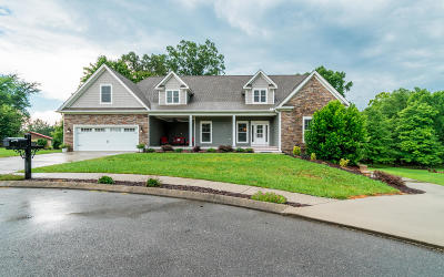 Twin Creeks Single Family Home For Sale: 252 NW Twin Creeks Dr