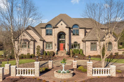 Ooltewah Single Family Home For Sale: 9719 Mountainaire Dr