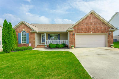 Ringgold Single Family Home For Sale: 69 Heatherwood Ln