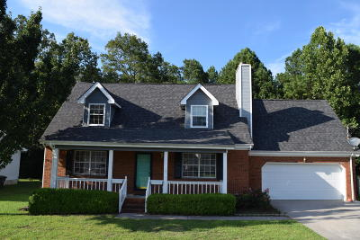 Chattanooga Single Family Home For Sale: 8614 Oak View Dr