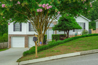 Ooltewah Single Family Home For Sale: 6138 Chandler Hill Rd #321