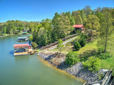 Single Family Home For Sale: 216 Overlook Dr