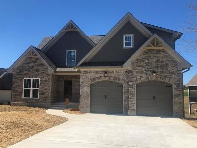 Soddy Daisy Single Family Home For Sale: 12733 Blakeslee Dr #86