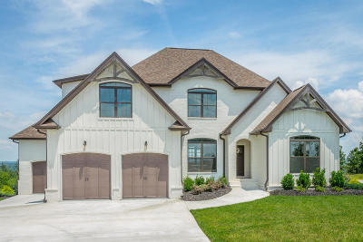 Soddy Daisy Single Family Home Contingent: 10910 High River Dr