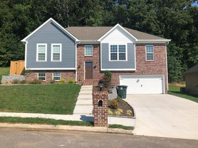 Chattanooga Single Family Home For Sale: 806 Windrush Loop