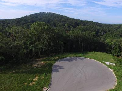 Chattanooga Residential Lots & Land For Sale: 5239 Abigail Ln #24