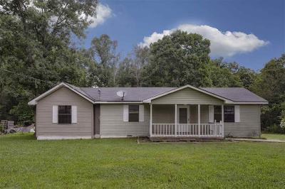 Dunlap Single Family Home For Sale: 1038 Black Mountain Rd