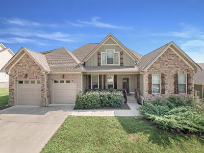 Chattanooga Single Family Home For Sale: 7975 Chianti Way