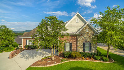 Ooltewah Single Family Home For Sale: 7320 Splendid View Dr