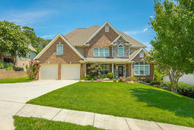 Ooltewah Single Family Home For Sale: 8959 Wandering Way