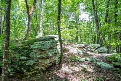 Lookout Mountain Residential Lots & Land For Sale: 320 Massey Ln