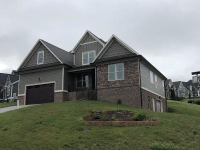 Ooltewah Single Family Home For Sale: 8898 McKenzie Farm Dr