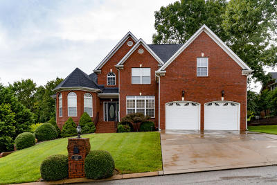 Chattanooga Single Family Home For Sale: 5817 Players Ct