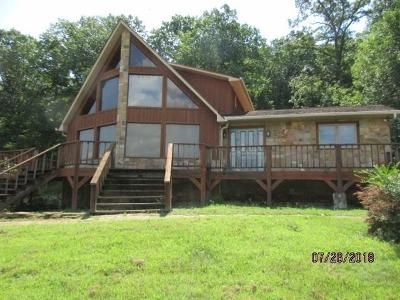 Spring City Single Family Home For Sale: 25214 Rhea County Hwy