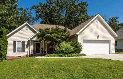 Ooltewah Single Family Home For Sale: 6537 Sawtooth Dr