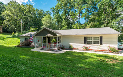 Ringgold Single Family Home For Sale: 36 Janie Ave