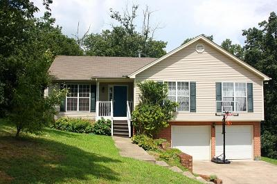 Ooltewah Single Family Home For Sale: 6445 Vinings Ln