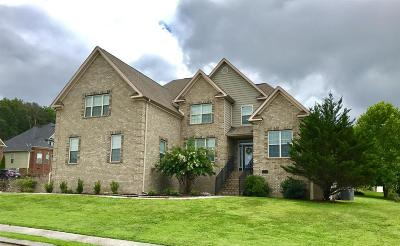 Ooltewah Single Family Home For Sale: 6970 Neville Dr