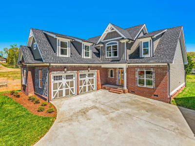 Ooltewah Single Family Home For Sale: 9495 Silver Stone Ln #7
