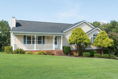 Ringgold Single Family Home For Sale: 573 Debbie Ln