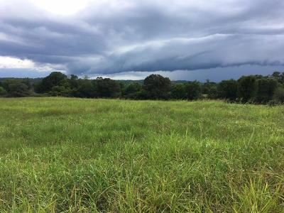 Residential Lots & Land For Sale: 13583 Braxton Ln