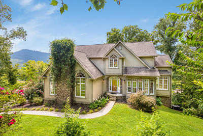 Chattanooga Single Family Home For Sale: 3100 Waterfront Dr