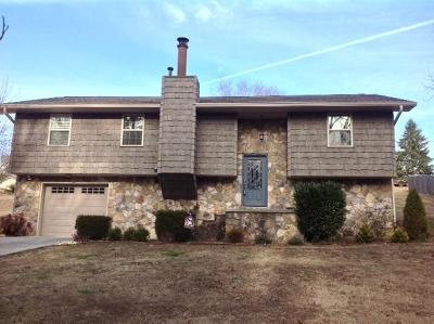 Dayton Single Family Home For Sale: 579 Armstrong Ferry Road Rd