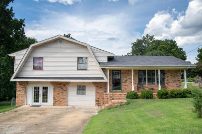 Ringgold Single Family Home For Sale: 122 Ruth Ln