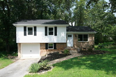 Ooltewah Single Family Home For Sale: 4056 E Freedom Cir