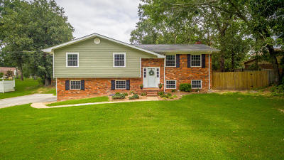 Chattanooga Single Family Home For Sale: 203 Rolling Ridge Dr