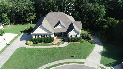 Ringgold Single Family Home For Sale: 105 Will Ridge Dr