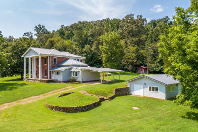 Rising Fawn Single Family Home For Sale: 1111 Newsome Gap Rd